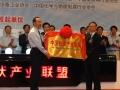 中国光伏产业联盟成立大会在常州举行 (4图)