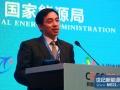舒桦:中国光伏企业如何健康发展
