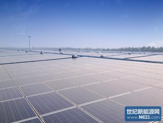 力诺电力承建的山东最大工业厂房光伏电站并网发电