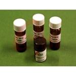 供应高品质N719染料