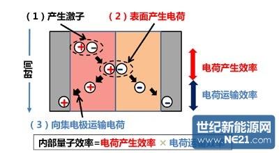 有机薄膜太阳能电池器件的光电转换过程.(出处:日本筑波大学)