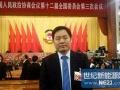 全国政协委员朱共山:光伏电站土地税不能乱征,最好免征