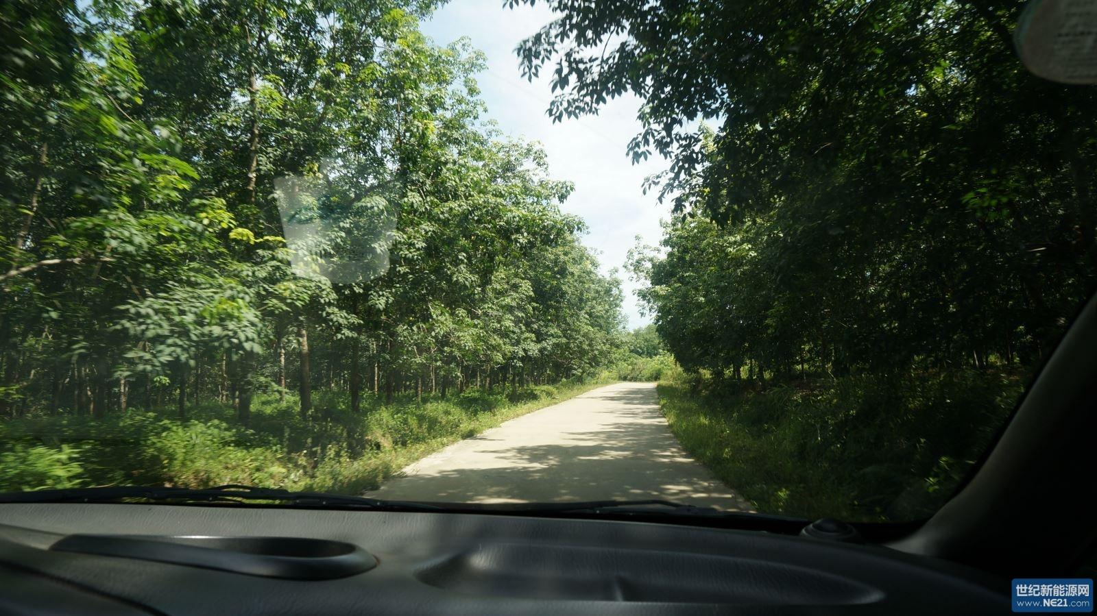 橡胶树的乡间公路行驶1个多小时