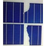 长期供应156多晶电池片、硅片回收13773528825