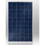 Poly 260w solar module