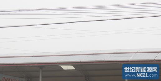张东村集贸市场大棚顶上安装的光伏发电板