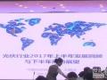 王勃华:光伏行业2017年上半年发展回顾与下半年形势展望