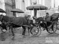 从畜力到纯电动 公交车经历了100多年!