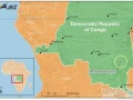 """刚果会成为新能源汽车业的""""沙特""""吗?"""
