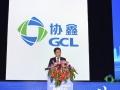 朱钰峰:中国光伏全球化之路将越走越宽广