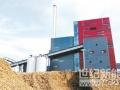 燃煤耦合生物质发电:大规模试点欠妥 电价政策模糊不清