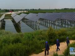 """河北沧州推进""""光伏电站扶贫工程""""使农户受益"""