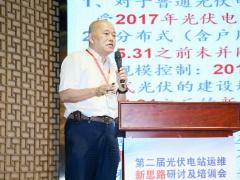 王斯成:中国能源转型促进光伏快速发展