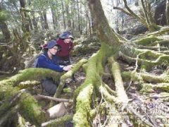 武夷山国家公园开展生态科考活动