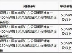 【招标】国家电投550MW海上风电场项目风电机组设备开始招标!