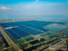 华东院天长渔光互补光伏发电项目通过验收