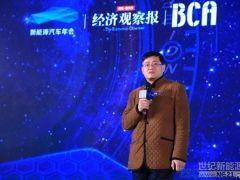 王子东:2020年动力电池目标较难实现