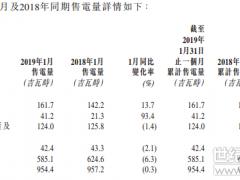 中广核新能源1月中国太阳能项目增加93.4%