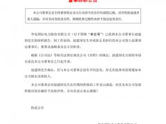 重磅人事|华电国际董事长赵建国因工作原因辞职