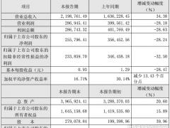 受存货跌价准备计提影响 隆基股份2018净利降28.24%