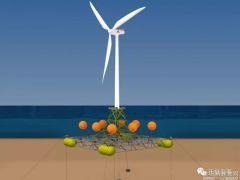 英国DualSub结合风能与波浪能 助力深水区风电开发