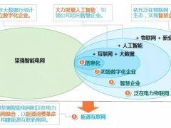"""湖南电力总经理李生权:以数字化转型推进""""三型两网""""战略全面落地"""