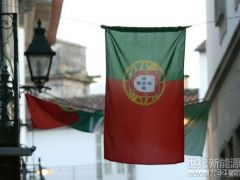 1.4GW招标吸引10GW投标!葡萄牙首次太阳能拍卖触发雪崩式投标