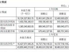 营收161亿元 净利14.5亿元 通威上半年财报亮点