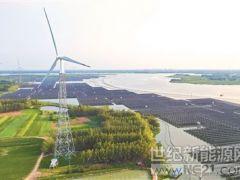 江苏泗洪因地制宜发展光伏产业 水面上架电板