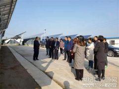合阳:陕西省扶贫办省能源局来合调研光伏扶贫项目实施情况