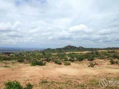 三一重能坦桑尼亚签署600MW风电投资协议!