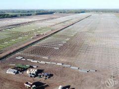 正泰荷兰146MW光伏电站开始建设