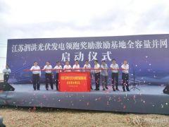 """""""泗洪速度""""逆疫而上 500MW光伏电站并网发电"""