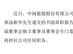 中闽能源独立董事汤新华辞职 2019年薪酬为8000元