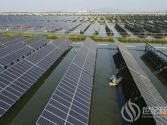 """江苏连云港:""""渔光一体""""光伏电站项目 依托产业化模式提高养殖效益"""