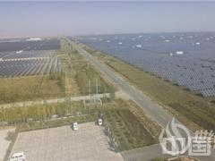 """西部开发新脉动 """"光伏+生态"""" 清洁能源大有可为"""
