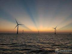 因时因地制宜:海上风电正确打开方式