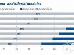 单面及双面组件的市场份额