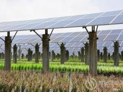 广东惠州建设90兆瓦光伏发电项目,年发电量为1亿度,投资3.6亿元