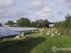 阿特斯将与英国温德尔资本联合开发1.4 GW光伏项目