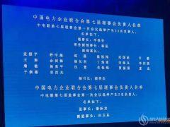 辛保安当选新一届中电联理事长