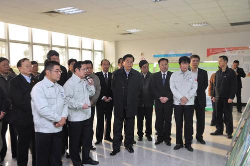 中共中央政治局委员,国务院副总理张德江视察天威新能源图片